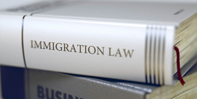 Masters of Immigration Law