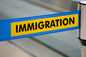 Duncan Lewis:Immigration